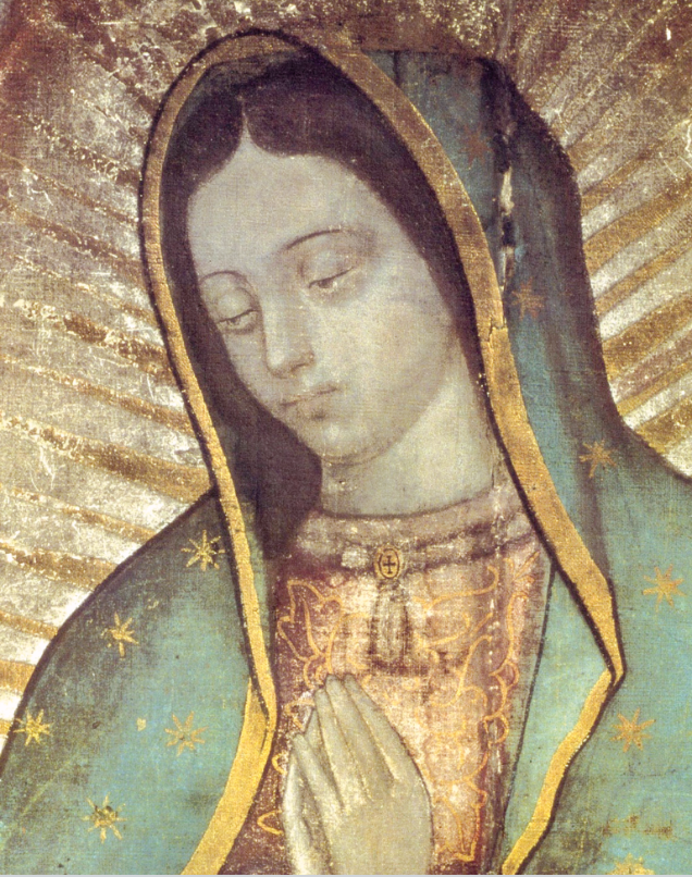 Virgin Mary Of Guadalupe >> Home enthronement of Our Lady of Guadalupe | Mission